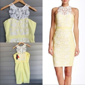 NWT London Dress Company Daisy Yellow Dress
